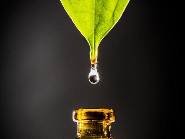 huiles essentielles erection